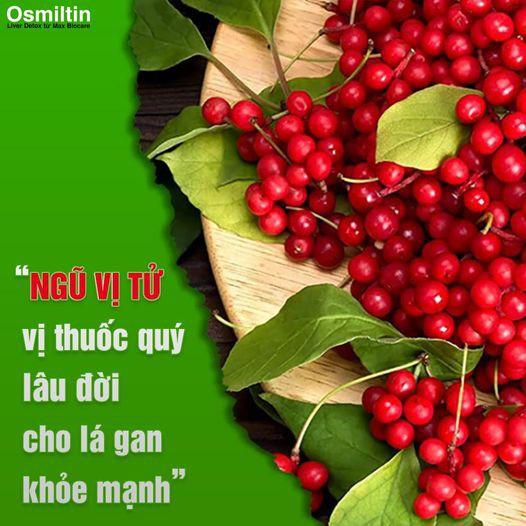 Viên uống Osmiltin Liver Detox - Giải độc gan và bảo vệ gan