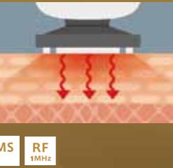 máy massage mặt yaman hrf 10t