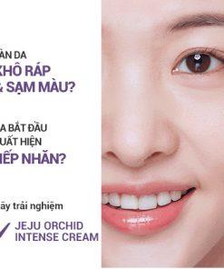 Kem dưỡng Innisfree Jeju Orchid Enriched Cream